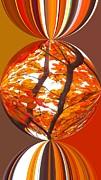 Fall Ball - Autumn Color Print by Scott Cameron