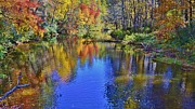 Bill Hosford - Fall Beauty