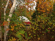 Peterson Nature Photography Posters - Fall Camping Poster by Melissa Peterson