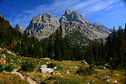 Raymond Salani III - Fall Cascade Canyon