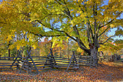 Rural Indiana Prints - Fall Color #2 Print by Wendell Thompson