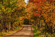 Photos Of Autumn Prints - Fall color along a dirt backroad Print by Jeff Folger