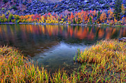 Scott McGuire - Fall Color at Dusk along...
