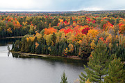Jeff Holbrook Art - Fall Color on the Au Sable  by Jeff Holbrook