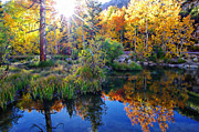 Scott McGuire - Fall Color Reflection...