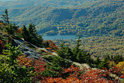 Paul Lyndon Phillips Posters - Fall Color Summit Grandfather Mountain NC - c1286a Poster by Paul Lyndon Phillips