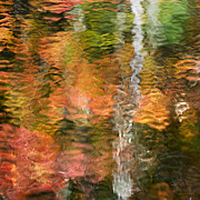 Original Abstracts Digital Art - Fall Colors Abstract Reflection by Christina Rollo