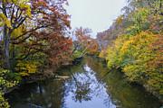 Barbara Bowen - Fall colors along the Chattooga River