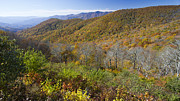 Fall Trees Posters - Fall Colors Blue Ridge Parkway NC Poster by Dustin K Ryan