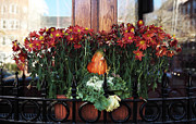 Fall Photographs Posters - Fall Colors in Boston Poster by John Rizzuto