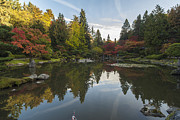 Fall Colors Photos - Fall Colors the Pool and the Fish by Mike Reid