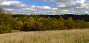 David Yunker Framed Prints - Fall Countryside Framed Print by David Yunker