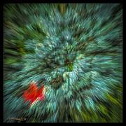 LeeAnn McLaneGoetz McLaneGoetzStudioLLCcom - Fall Cross Stitch Abstract
