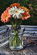 Susan Smith - Fall Daisy Cheer
