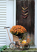 Bittersweet Posters - Fall Decorative Front Door Poster by Janice Drew