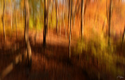 Red Maple Trees Posters - Fall Divine Poster by Lourry Legarde