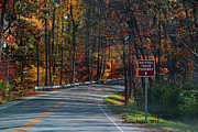 Natchez Trace Parkway Metal Prints - Fall Drive in Tennessee Metal Print by EricaMaxine  Price