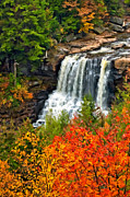 State Park Digital Art Posters - Fall Falls oil Poster by Steve Harrington
