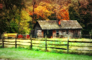 Shed Digital Art Posters - Fall Fenced In Poster by Mary Timman