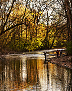 Fishing Creek Prints - Fall Fishing Print by Gallery Three