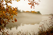 Allan Millora Framed Prints - Fall foggy day  Framed Print by Allan Millora