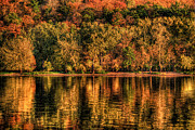 Stillwater Art - Fall Foliage by Adam Mateo Fierro
