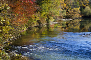 River Scenes Digital Art Prints - Fall Foliage Along The Otselic River Print by Christina Rollo
