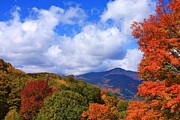 Michael Weeks - Fall Foliage on the Blue...