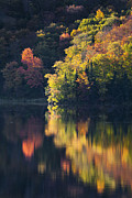 Alan L Graham - Fall Foliage Reflections