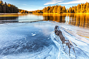 Bulgaria Metal Prints - Fall Gives Way To Winter Metal Print by Evgeni Dinev