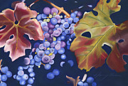 Vine Grapes Pastels Posters - Fall Grapes Poster by Nancy Helm