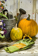 Fall Harvest Print by Heather Applegate