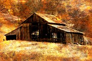 Old Barns Digital Art Acrylic Prints - Fall in Country Acrylic Print by Irina Hays