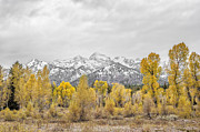 Paul W Sharpe Aka Wizard of Wonders - Fall in Grand Teton...