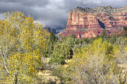 Photographs With Red. Prints - Fall in Sedona Print by Wendy Elliott