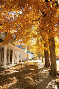 Indiana Autumn Prints - Fall in small town Print by Alexey Stiop