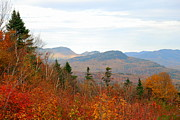 Autumn In The Country Prints - Fall In The North Country Print by Eunice Miller