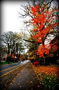 Fall In The Northwest Print by Heather L Giltner
