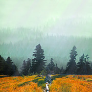 Pastureland Prints - Fall in the Northwest Print by Jeff Burgess