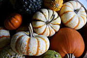 Harvest Time Prints - Fall Is Harvest Time Print by Christiane Schulze