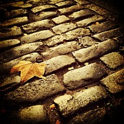 Cobbles Art - Fall by Jeff Klingler