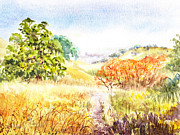 Park Scene Paintings - Fall Landscape Briones Park California by Irina Sztukowski