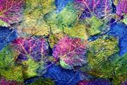 Fall Leave Abstract Print by Judy Palkimas