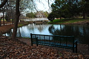 Pond In Park Framed Prints - Fall Leaves Carpeting and Metal Sofa Framed Print by PAMELA Smale Williams