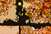 Abstraction Digital Art - Fall Nights by John Lautermilch