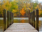 Joeseph Framed Prints - Fall on the Dock Framed Print by Amy Lingle