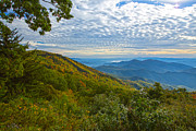 Appalachia Photos - Fall on the Green Knob by John Haldane