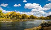 Flyfishing Prints - Fall on the San Juan River Print by Darin Wallentine