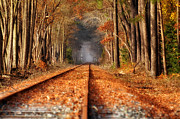 Tamera James Prints - Fall on the Tracks Print by Tamera James