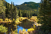 Golden Pond Prints - Fall Pond Cottonwood Pass Print by The Forests Edge Photography - Diane Sandoval